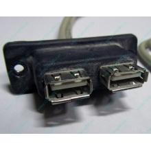 USB-разъемы HP 451784-001 (459184-001) для корпуса HP 5U tower (Иваново)