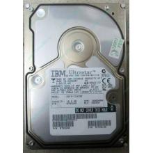 Жесткий диск 18.2Gb IBM Ultrastar DDYS-T18350 Ultra3 SCSI (Иваново)